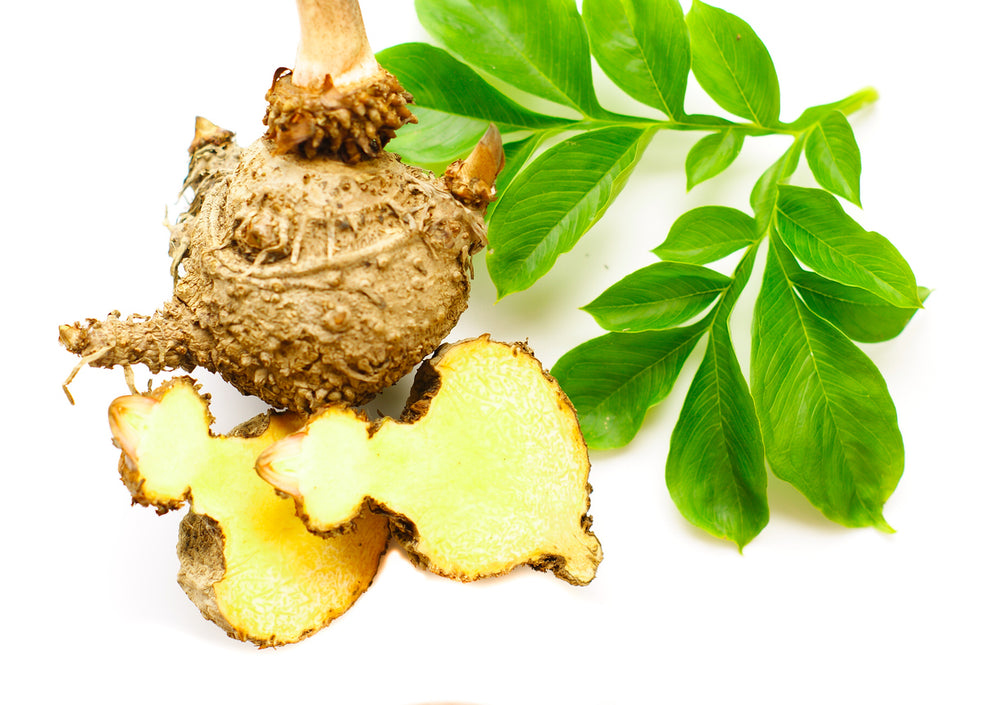 3 Benefits of Konjac Root