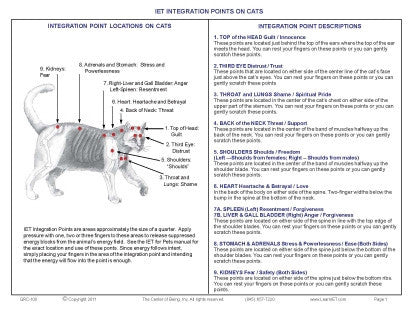 Quick Reference Guide 8: IET for Pets - Cats