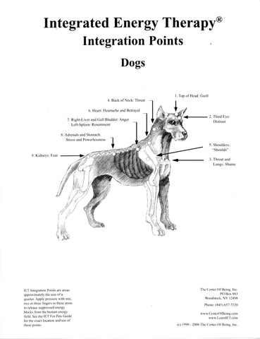 IET for Dogs Poster