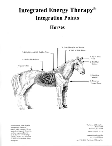 IET for Horses Poster