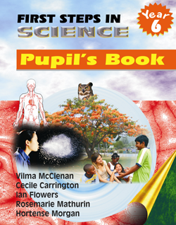 First Steps in Science Pupil's Book: Year 6