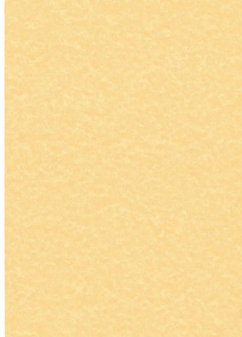 Parchment cover stock paper (pack of 100 sheets)
