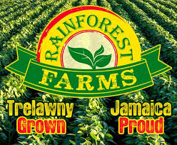 Rainforest Ready Mix Vegetables