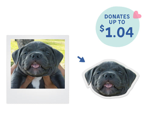 Custom Stickers of Your Pet's Head (Set of 6)