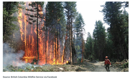 Wildfire Hot Spots with Thermal Imaging Drone