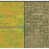 Pix4D Fields - Software for Aerial Crop Analysis and Digital Farming