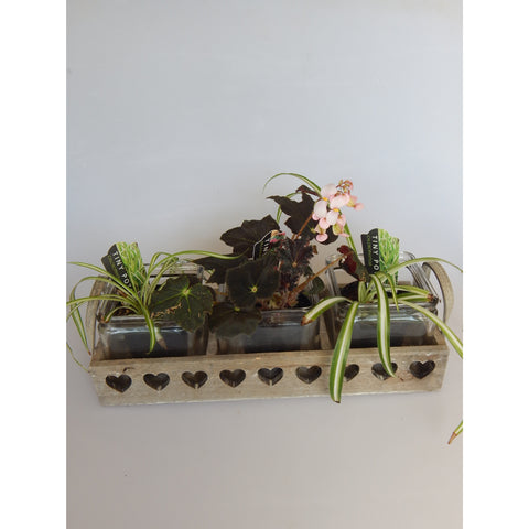 Shabby Chic 3 Glass Pots in Wooden Heart Tray, buy now at Vivre, Nelson, NZ