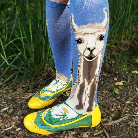 Fun, funky socks in knee high and crew, fabulous styles buy now at Vivre, Nelson, NZ. Sloths, strawberries, poppies, and more