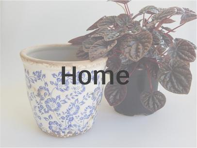 Shabby chic and rustic style accessories for your home and great gift ideas at Vivre, Nelson, NZ