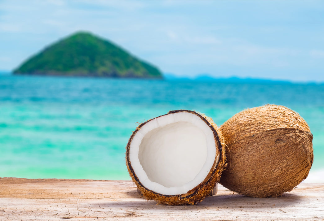 Two virgin coconuts overlooking the ocean