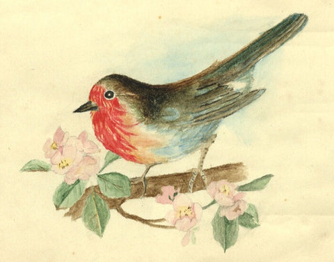 E.C.W., Robin - Original 1921 watercolour painting