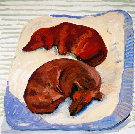 Dachshund by David Hockney