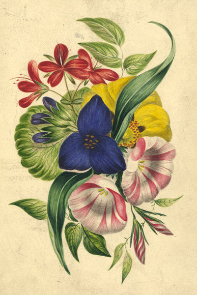 Floral Posy - Original 19th-century watercolour painting