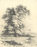 Frances Mary Perring, Study of the Elm Tree - Original 1842 graphite drawing