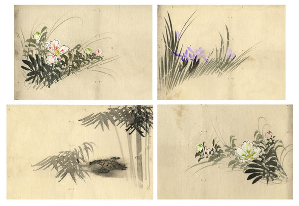 Chinese Flora on Silk - Set of four mid-20th-century watercolour paintings