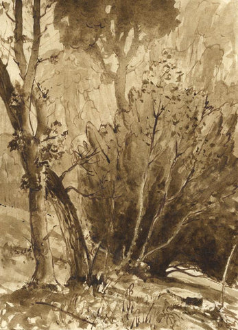 Myles Tonks, Sepia Woodland - Original early 20th-century watercolour painting