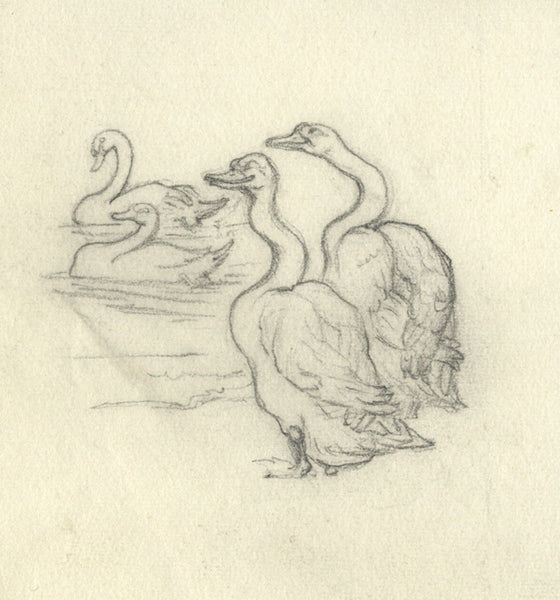 Elsie Powell, Swans - Original early 20th-century graphite drawing