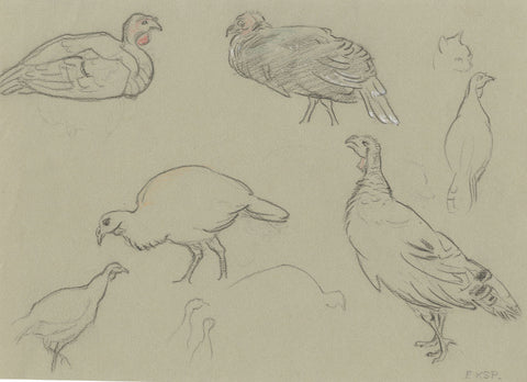 Elsie Powell, Turkeys Study - Original early 20th-century charcoal drawing