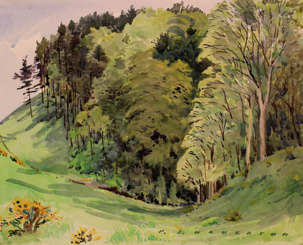 PJ Haughton, Woods in Summer - Original mid-20th-century watercolour painting