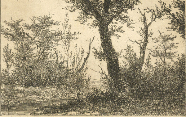 A. Hunter, Woodland - Original 1840 etching print