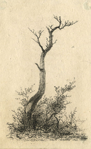 A. Hunter, A Tree in Winter - Original 1846 etching print