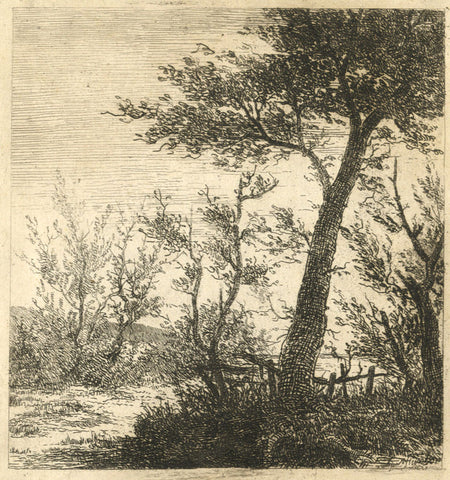 A. Hunter, Trees in Silhouette - Original early 19th-century etching print