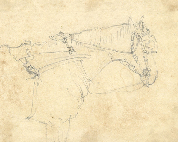 A. hunter, Horse with Blinkers - Original early 19th-century graphite drawing
