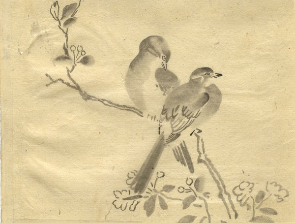 Birds on Blossom Branch - Original 19th-century Japanese watercolour painting