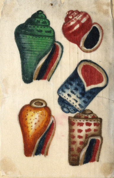 Antique 19th-century Chinese Pith Painting, Shells