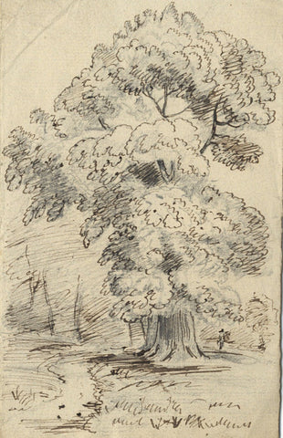 Woodland Trees with Figure - Original 19th-century pen & ink drawing