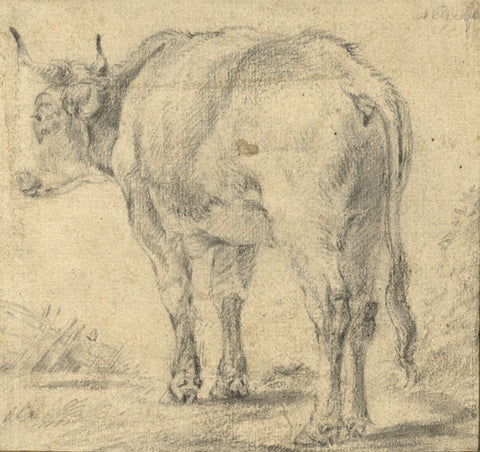 Follower of Adriaen van de Velde, Cow Study - Original 17th-century graphite drawing