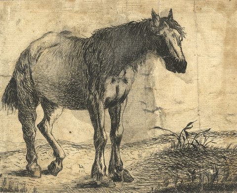 Follower of Dirk Stoop, Horse Study - Original 17th-century pen & ink drawing