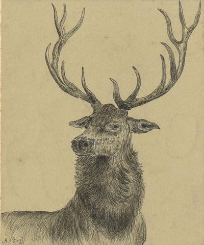 A.H. Boord, Stag Head Portrait - Original 1883 pen & ink drawing