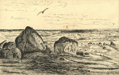 A.H. Boord, Rocks off Coast with Gulls - Original 1884 pen & ink drawing