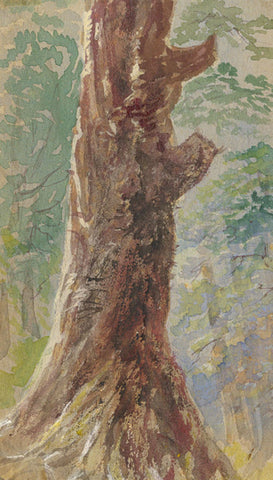 Tree Trunk Miniature - Original early 20th-century watercolour painting