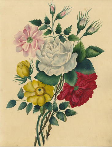 Fanny Atkinson, White & Pink Rose Posy - Original 1845 watercolour painting