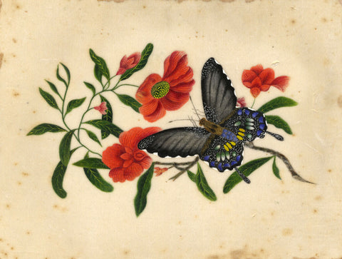 Antique 19th-century Painting on Chinese Pith, Butterfly on Flower