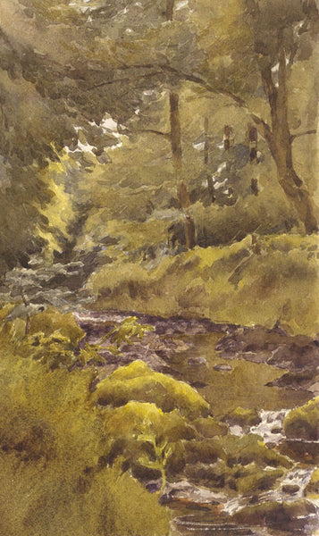 A.K. Rudd, Woodland Brook - Original late 19th-century watercolour painting