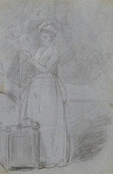 A.C.H. Luxmoore, Woman Tending to Plant - 19th-century charcoal drawing