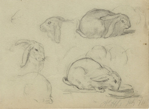 A.C.H. Luxmoore, Rabbit Studies - 19th-century graphite drawing