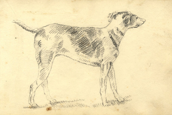 Alexander Dyce, Pointer Dog - Original 1810 charcoal drawing