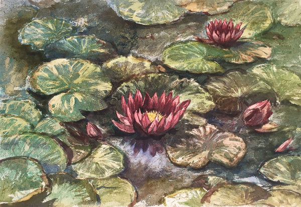 Thomas G. Hill, Water Lilies - Original mid-20th-century watercolour painting