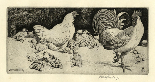 James Robert Granville Exley RE, Bewilderment - Early 20th-century bird etching