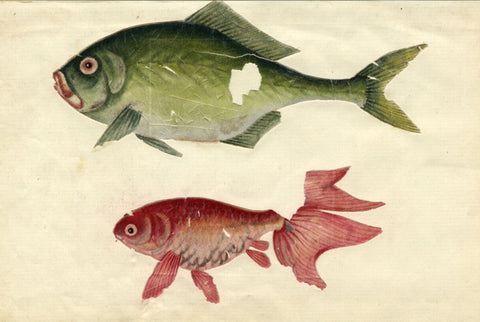Antique Mid-19th-century Chinese Watercolour Painting on Pith - Fish