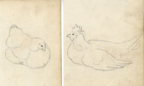 Sitting Hens - Two original late 19th-century graphite drawings