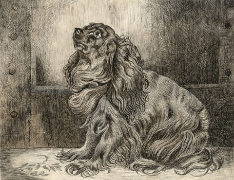 King Charles Spaniel after Sir Edwin Landseer - Late 19th-century ink drawing