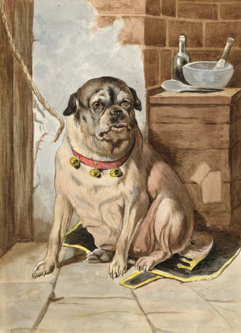 The Dutiful Pug Dog - Original late 19th-century watercolour painting