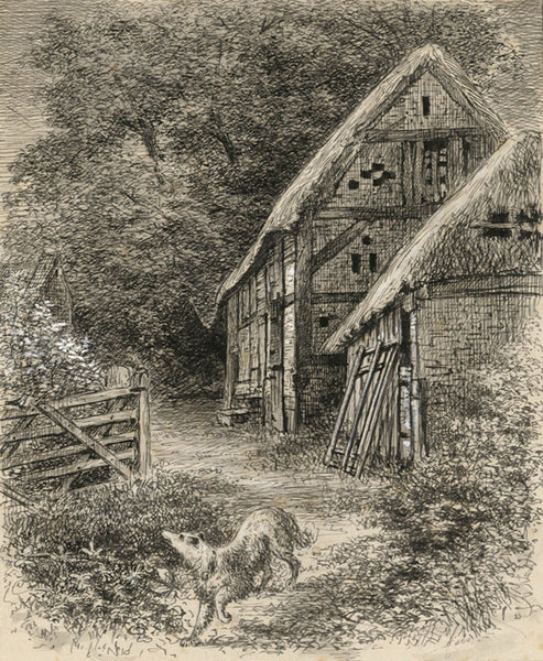 Thomas J. Marple, Thatched Barn, Littleover -Late 19th-century pen & ink drawing