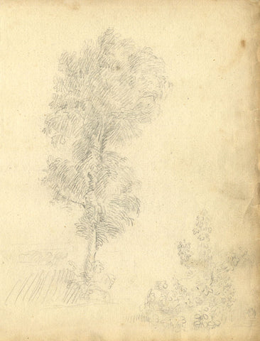 George Evans, Tree and Foliage Studies  - Original 18th-century graphite drawing