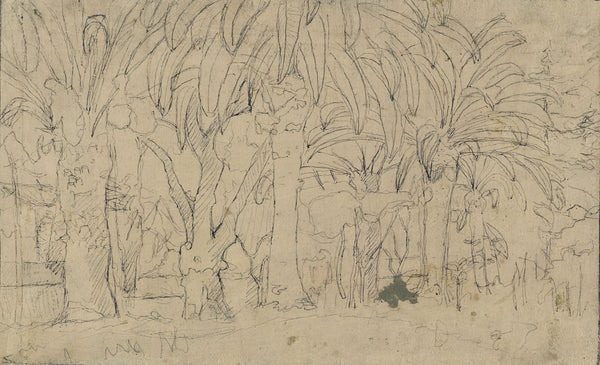 Attrib. Eduard Bargheer, Palm Trees -Mid-20th-century ink drawing over oil paint